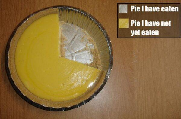 20150907 pie-chart-1
