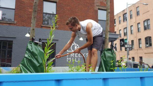 ▲志工正在照料生態垃圾桶。(圖片來源:Ecological Landscape Alliance)